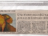29-septiembre-gina-intveen-expondra-magnificas-pinturas-en-extension-ubb